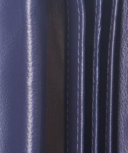 Portfel damski PUCCINI M-1958 fioletowy